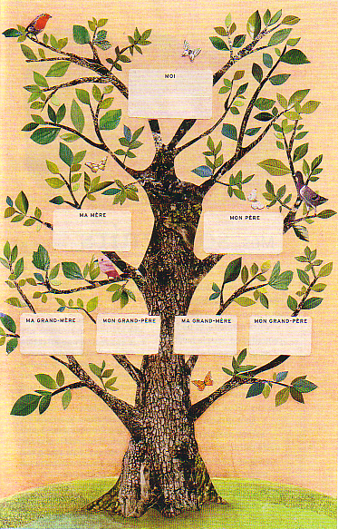 Pin arbre genealogique tous les messages sur mes on pinterest - Stickers arbre genealogique ...